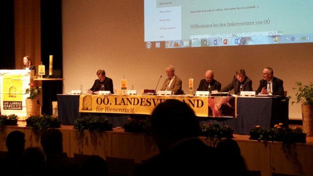 Die Mitglieder des Vorstandes des Oberösterreichischen Landesverbandes für Bienenzucht bei der Generalversammlung
