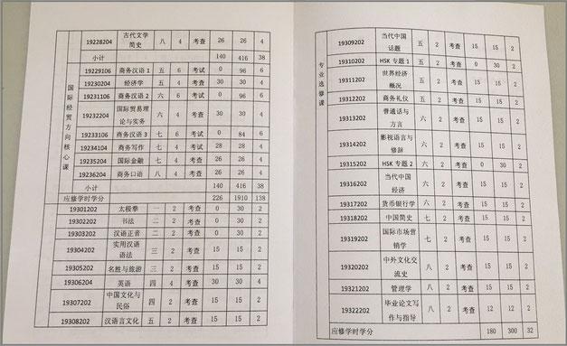 中国大連北京上海留学 本科シラバス 選択科目