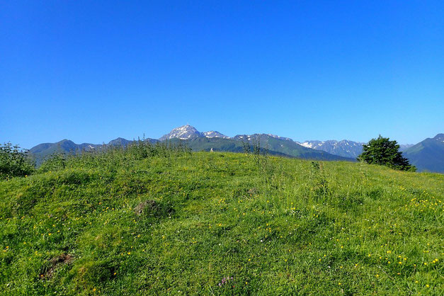 Avec au fond, le Pic du Midi de Bigorre.