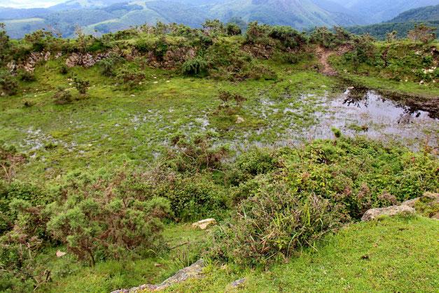 Dans les fossés, encore beaucoup d'eau.
