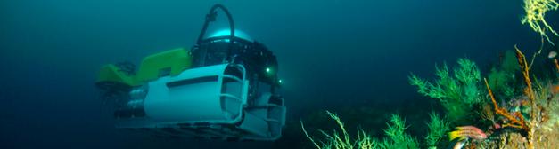 Deep Sea sumergibles en aguas profundas
