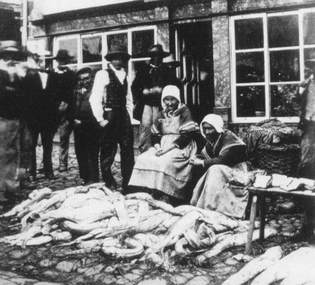 Marchandes de congre à Lannion vers 1870