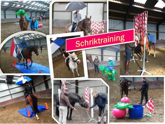 Schriktraining of horse agility met je paard. Aan de hand of onder het zadel.