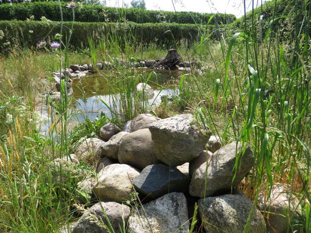 Der Steinhaufen am Teich.