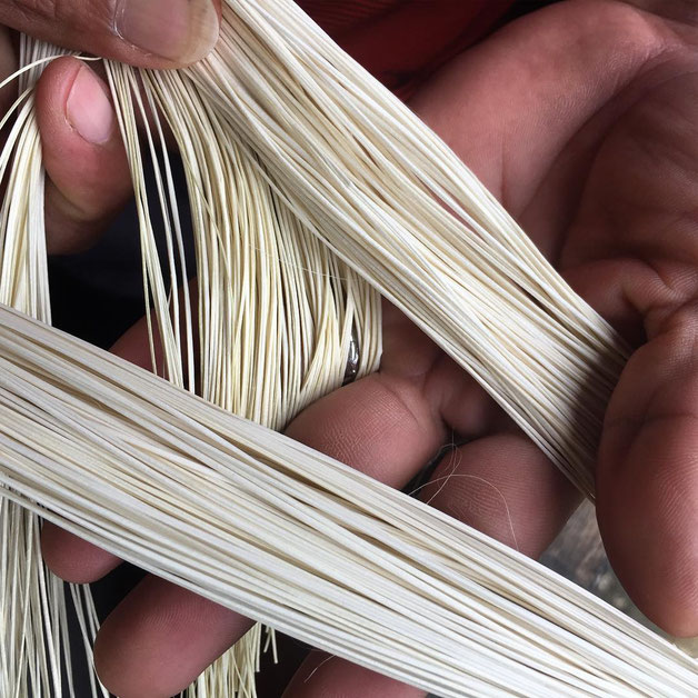 After a long process the stems of the palm are already straw, to weave the best Panama hats