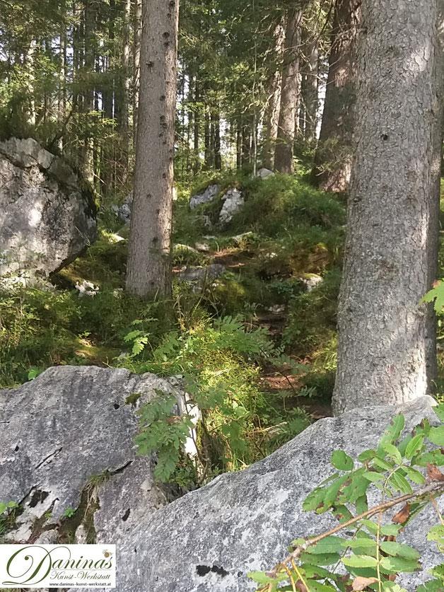 Im Zauberwald - Achte auf die Details in der Natur, das tut Deiner Gesundheit und Seele gut !