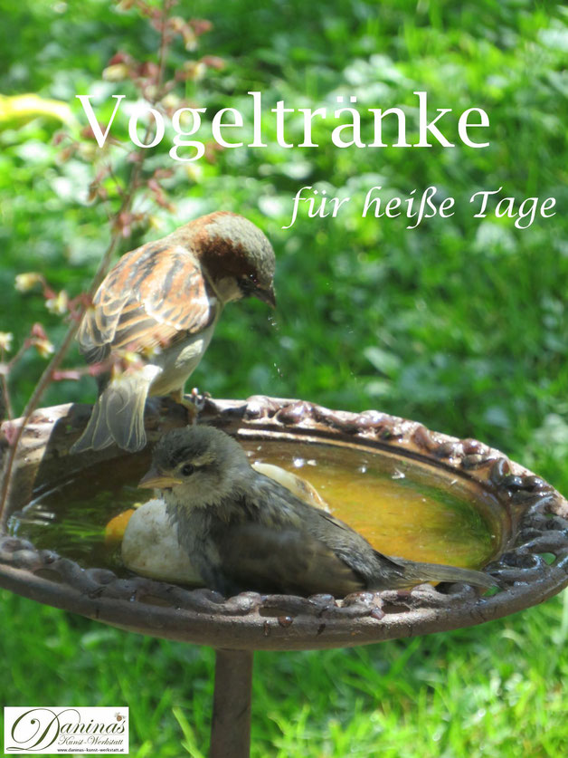 Hilfe für Singvögel im Sommer: Wassertränke und Badestelle im Garten aufstellen.