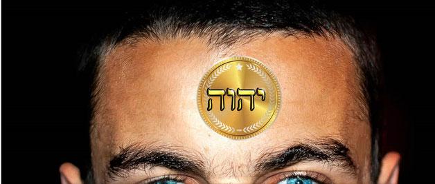Je regardai et je vis l'Agneau debout sur le mont Sion, et avec lui 144'000 personnes qui avaient son nom et le nom de son Père écrits sur leur front. le sceau contient le nom de l'Agneau, Jésus-Christ, et le Nom de Dieu: Yahvé, Yahweh ou Jéhovah.