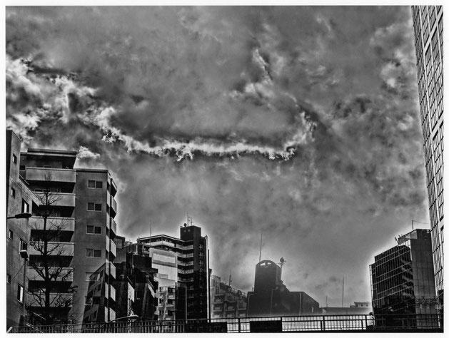 撮影:川田喜久治