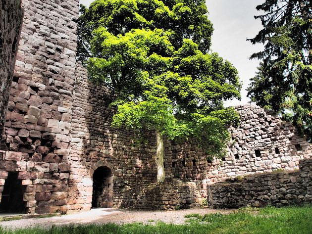 Ein romantischer Platz zum Verweilen: die Ruine Waldau