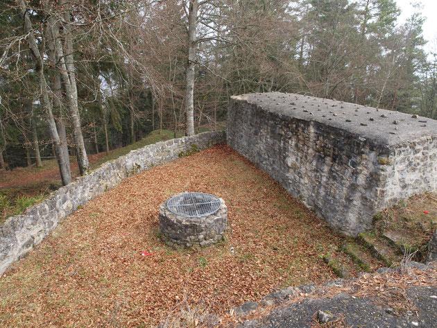 Ruine Waseneck im Herbst