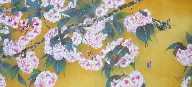 宝居智子「ぼんぼり八重桜-鬱金-」 絹・岩絵具 33.3x73cm