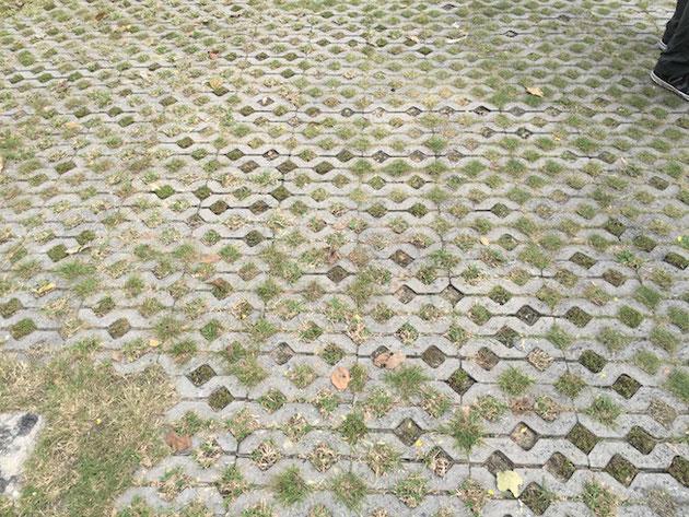 視察で訪れた企業さんの駐車場前に会った緑化ブロック