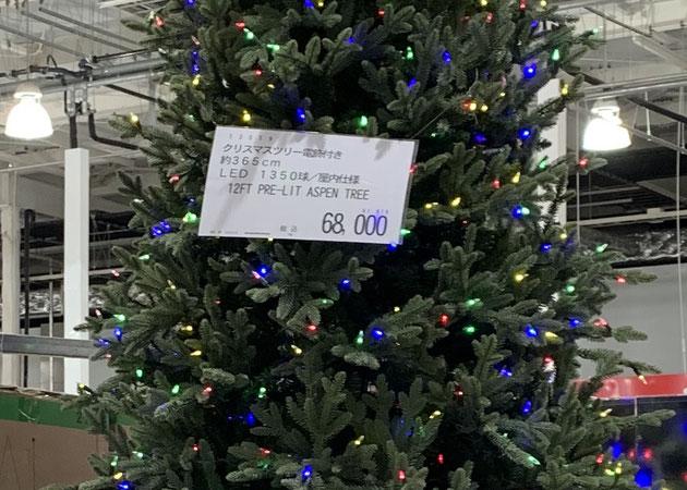 コストコのクリスマスツリー!約365cmで68000円。