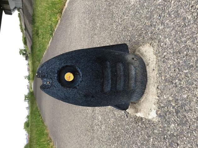河川敷の歩道の真ん中にあった魚の形をした車止め?これがいつの間にかポケモンジムになっていた!