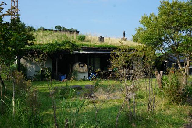 こちらは隣の棟。草屋根が印象的ですね。