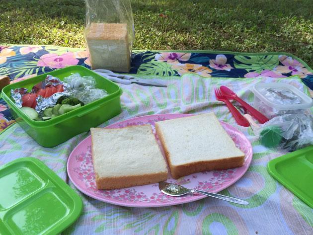 これがガーデンドクター柴ちゃんのお勧めするイングリッシュスタイルのピクニックだ!