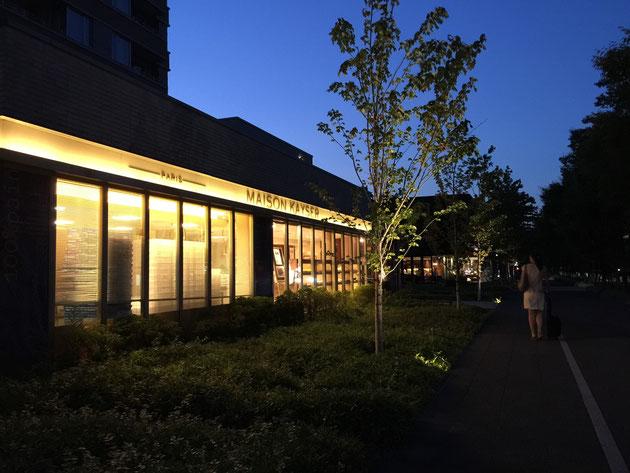 名古屋セントラルガーデンの夜景。それぞれの店のライトアップががとても美しい。