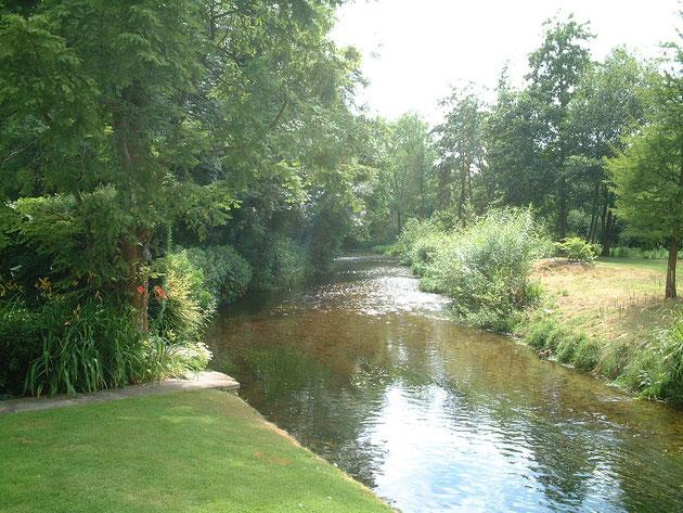 庭に流れている川