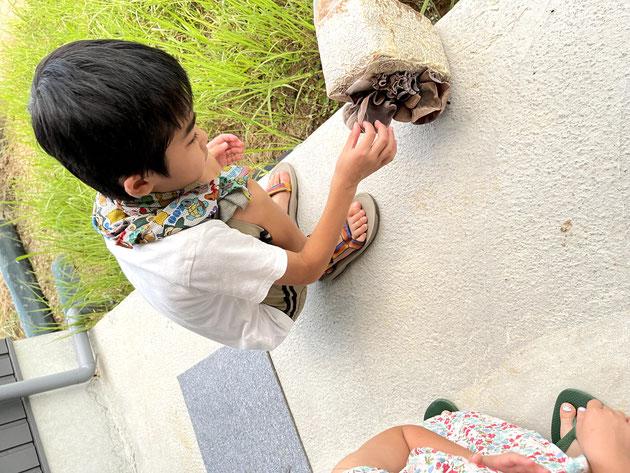 子供達もプルプルのキクラゲの触感を楽しんでいました。