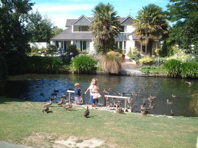 クライストチャーチの公園の水辺で鳥にえさをあげている子供 名古屋にもこんな素敵な住宅街が有ればいいのに・・・