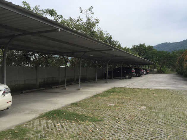 駐車場の前が緑化ブロックで覆われていた。