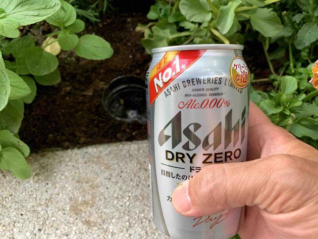 ノンアルコールビールでナメクジホイホイが作れるのか?実験してみた!