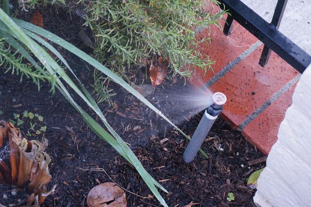 アメリカで見つけた自動灌水システム。これが無いと、手入れも大変だ。