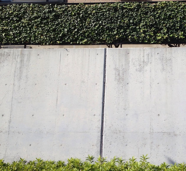 長久手市で見つけた素晴らしいフェンスの緑化