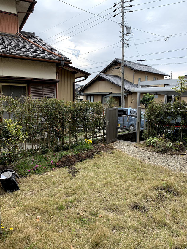 Before 尾張旭市 生け垣と芝生のメンテナンスが大変な庭