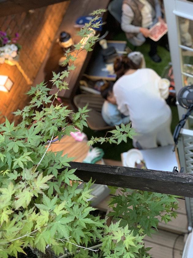 コロナの今。お家で過ごして庭で遊ぼう!!!