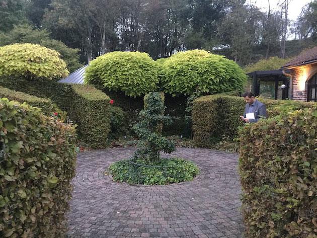 庭が凄くしっかりと作られて管理されているミシュラン星付きレストラン