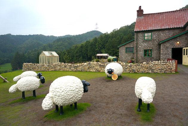 ひつじのショーンエリアには羊がいっぱい!