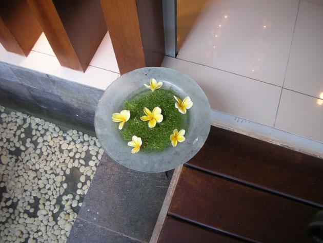 プルメリアと藻?の組み合わせ こちらもアレンジされているが素敵
