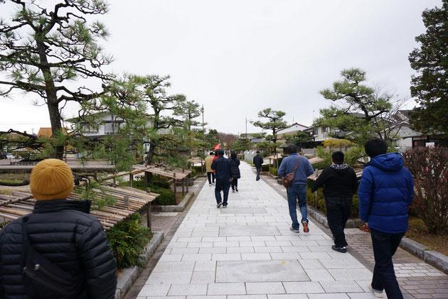 瑞龍寺へ向かう参道には左右に黒松が植えられていた。きれいに手入れをされ、低木を守雪囲いがされている。