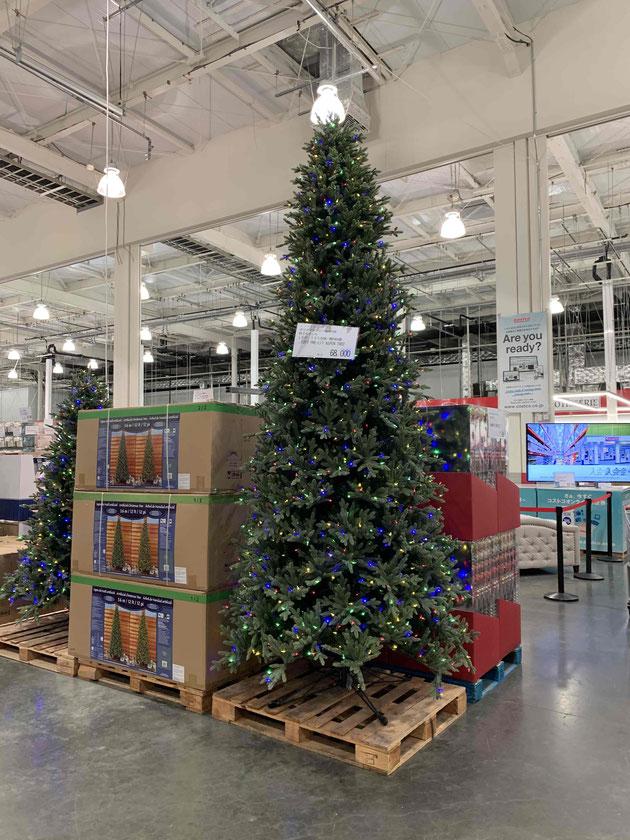 めちゃんこ大きいコストコのクリスマスツリー。