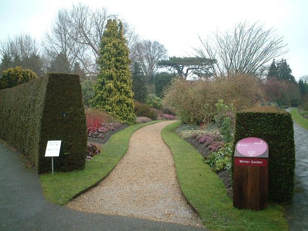 入り口にはしっかりと『Winter Garden(冬の庭)』という名前が入っている