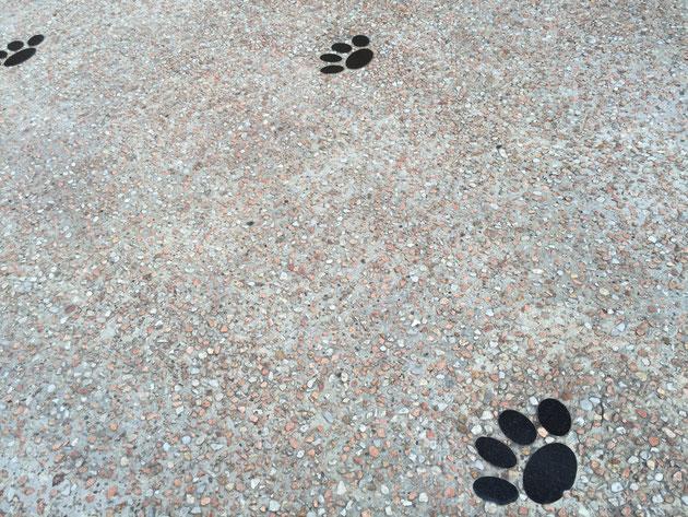 洗い出し仕上げにワンちゃんの足跡が!これはスヌーピーの足跡!?かわいい!
