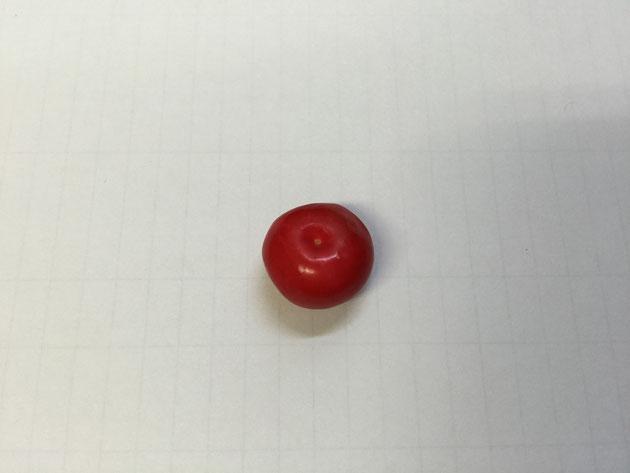 謎の赤い実の後姿。大きさは親指の先ほど。