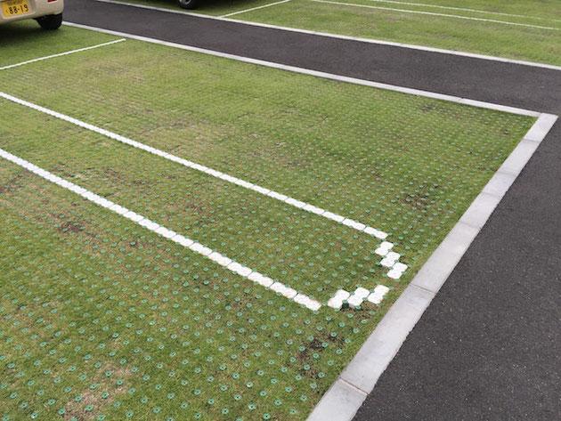 KDM.TXTさんの駐車場はなんと緑化されていた!