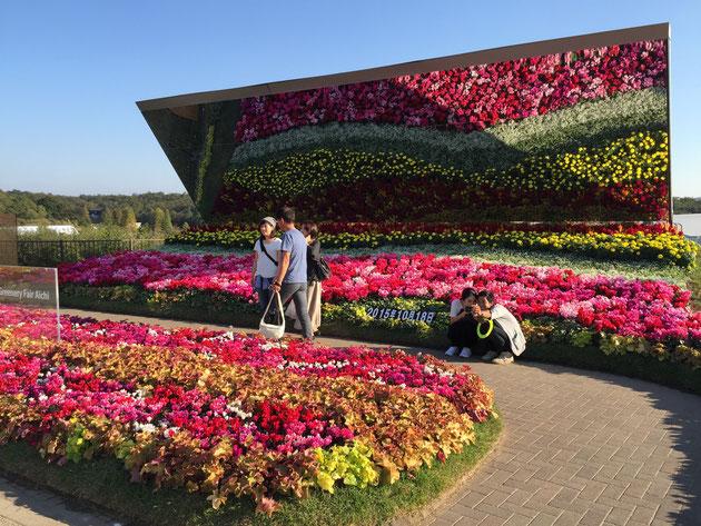 素敵な花壇。こちらも秋色。大きな鏡と記念になる日付も。最高の写真スポットですね!