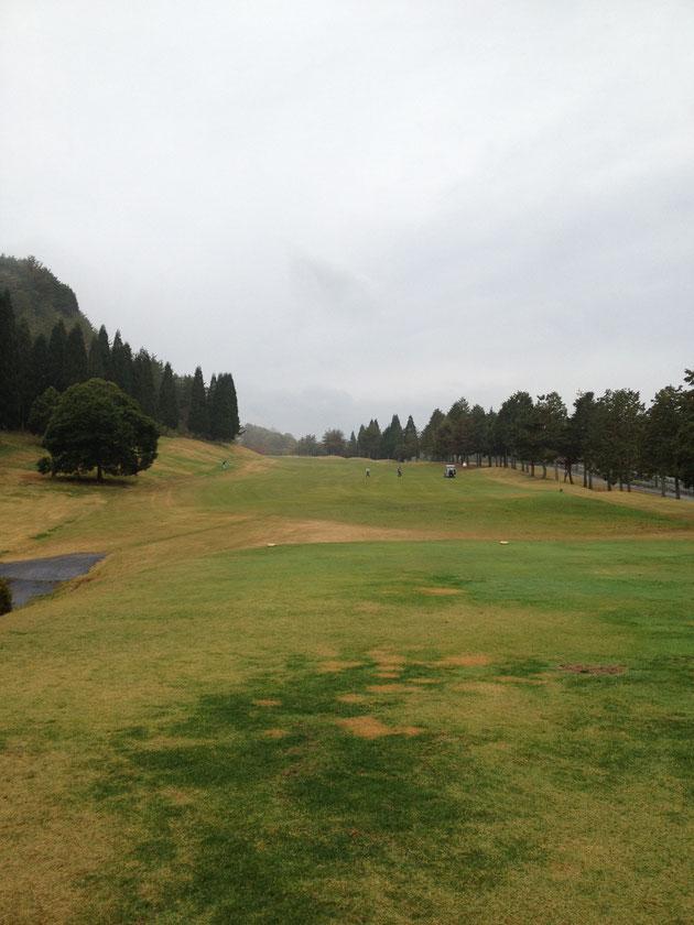 小雨の中ゴルフ開始 庭屋の性か芝生がやたら気になる