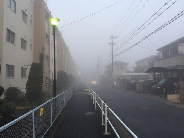 こういう霧の日は電気があるとありがたいですね。