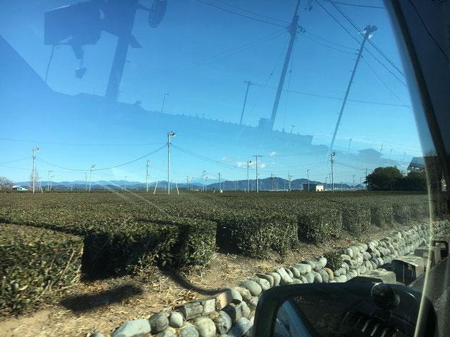 車窓から見えるのは、そう、富士山だ!!