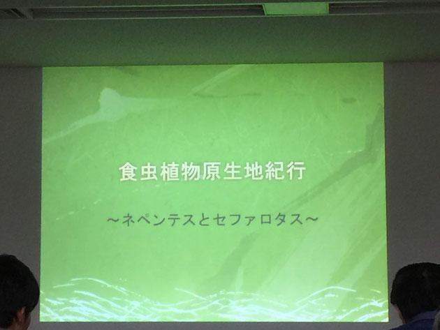 木谷さんの講演「食虫植物原生地紀行〜ネペンテスとセファロタス〜」