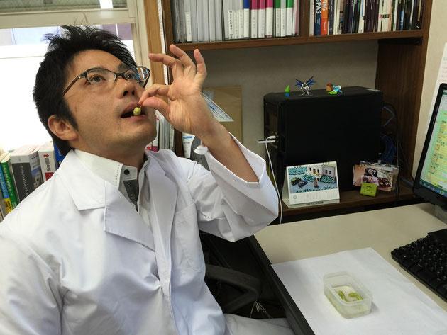漬けておいたクワの実を食べるガーデンドクター柴ちゃん お味は?