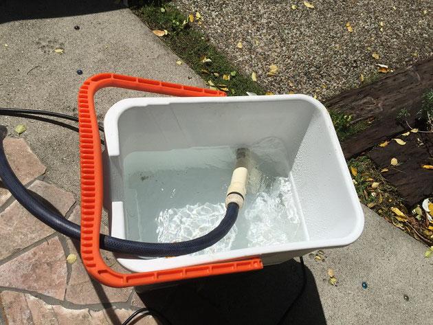 庭のホースからバケツに水をいれる。