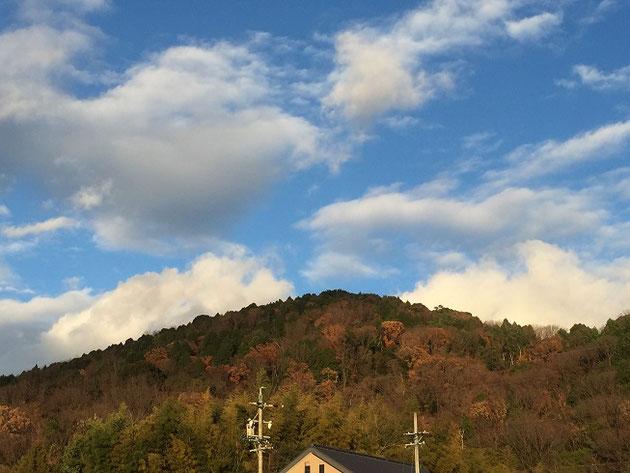 名古屋市最高峰の東谷山。