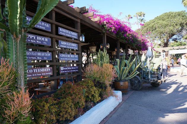 普段植木が植わっているであろう場所にサボテン!これぞメキシコに近いサンディエゴならではのお庭だ