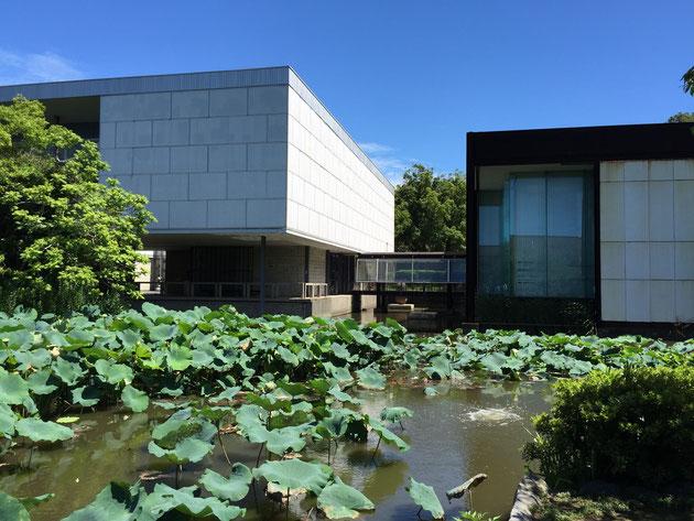 こちらが平家の池。島よりも目立つ現代美術館が印象的ですが、とにかく島の数は4つ。
